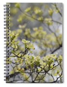Spirit Of The Dogwood Spiral Notebook
