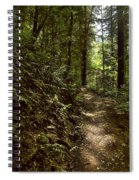 Spirit Of The  Wood Spiral Notebook