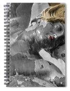 Spirit Of Water Spiral Notebook