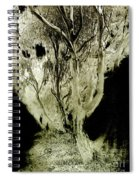 Spirit Tree Spiral Notebook