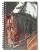 Spirited Spiral Notebook