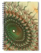 Spiritual Journey Spiral Notebook