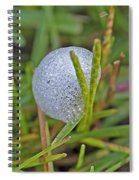 Spittle Bug Case Spiral Notebook