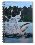 Splash Catch Spiral Notebook