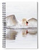Splash Landing I Spiral Notebook