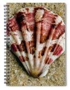 Splash Of Magenta Spiral Notebook