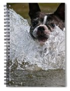 Splashdown Spiral Notebook