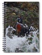 Splashed At Haystack Rock Spiral Notebook