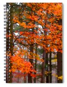 Splashes Of Autumn Spiral Notebook