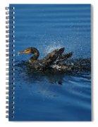 Splashing Cormorant Spiral Notebook
