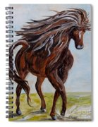Splashing The Light - A Young Horse Spiral Notebook