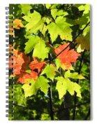 Splattered Paint Spiral Notebook