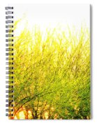 Yellow Splatter Spiral Notebook