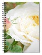 Splended Roses Spiral Notebook