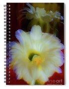 Splendid  Flower Of Cactus. Spiral Notebook