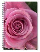 Splendid Rose Spiral Notebook