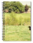 Splendor In The Grass Spiral Notebook