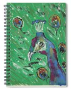 Splendor Is The Night Spiral Notebook