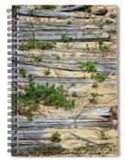 Splinters In The Sand Spiral Notebook