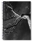 Split Black And White Spiral Notebook
