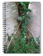 Split Tree Spiral Notebook