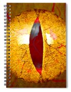Spooky Cat Eye Spiral Notebook
