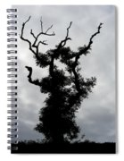 Spooky Tree Spiral Notebook