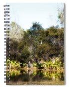 Spoon Bill Swamp Spiral Notebook