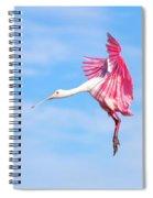 Spoonbill Ballet Spiral Notebook