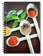 Spoons N Spices Spiral Notebook