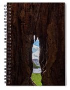 Spot The Lake Shore View Through The Hollow Tree Trunk Spiral Notebook