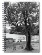 Spot The Woman And Her Dog- Behind The Tree Spiral Notebook