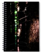 Spotlight In The Woods Spiral Notebook