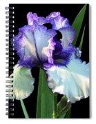Spotlight On 'freedom Song' Bearded Iris Spiral Notebook