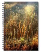 Spotlight On The Marsh Spiral Notebook