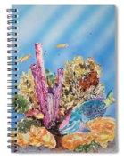 Spotlight Parrotfish Spiral Notebook