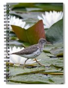 Spotted Sandpiper And Lilies Spiral Notebook