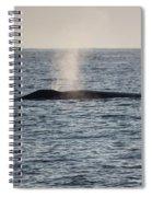 Spouting Spiral Notebook