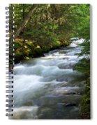 Sprague Creek Glacier National Park 2 Spiral Notebook