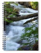 Sprague Creek Glacier National Park Spiral Notebook
