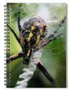 Sprawled Spiral Notebook