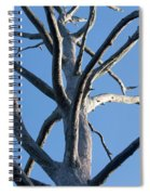 Sprawling Dead Tree Spiral Notebook