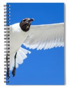 Spread Those Wings Pano Spiral Notebook