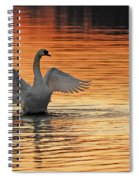 Spreading Her Wings In Gold Spiral Notebook