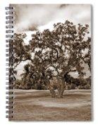 Spreading Tree Spiral Notebook