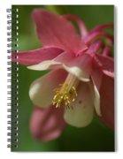 Spring 1 Spiral Notebook