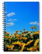 Spring 2015-pic 31 Spiral Notebook
