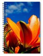 Spring 2015-pic21 Spiral Notebook