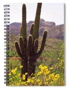 Spring Along Salt River Spiral Notebook