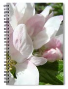 Spring Apple Blossoms Art Prints Apple Tree Baslee Troutman Spiral Notebook